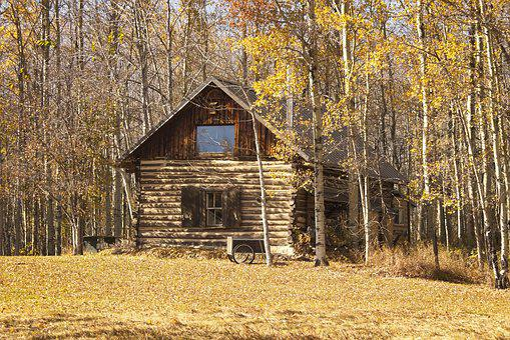 Log Cabin, Aspen, Forest, Cottage, Fall, Season, Autumn