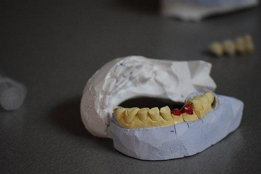 Teeth, Tooth, Dental, White, Mouth, Health, Care