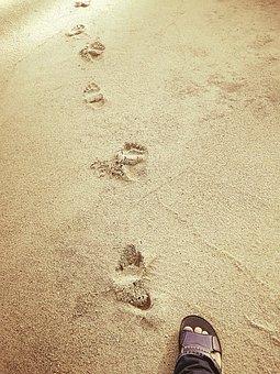 Sand, Beach, Footprint, People, Seashore, Sandy, Foot