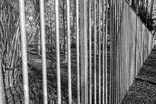 Steel Fence, Bars, Steel Bars, Security, Barrier