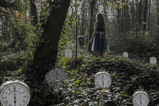 Time, Wood, Tree, Nature, Outdoors, Alice, Clocks, Old