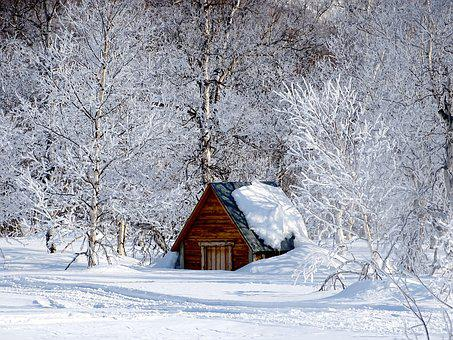 Winter Morning, Leann, Forest, Cottage, Spring, Cold