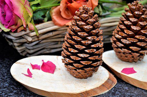 Wood, Pinecone, Tinkering, Decoration, Fall Colors