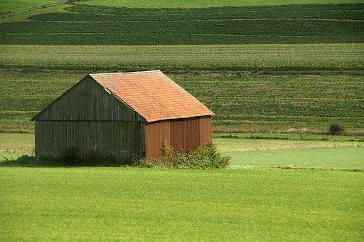 Barn, Grass, Farm, Field, Agriculture, Green, Arable