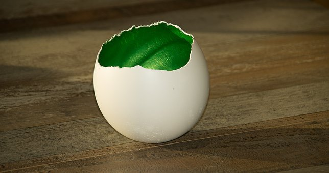 Diy, Shell, Eggshell, Gold, Green Blue, Easter