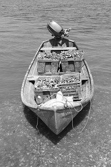 Boat, Transport, Vehicle, Body Of Water, People, One