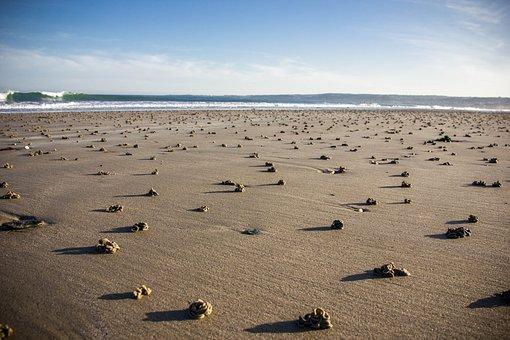 Beach, Sand, Coast, Sea, Waters, Bank, Nature, Tides