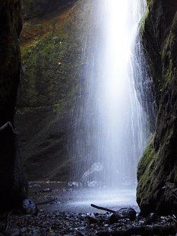 Waterfall, Forest, Los Tilos, San Andrés Y Sauces