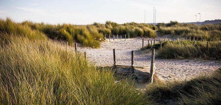 Waters, Nature, Panorama, Lake, Grass, Dune
