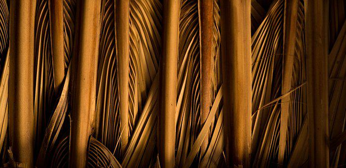Desktop, Pattern, Abstract, Industry, Nature, Wood