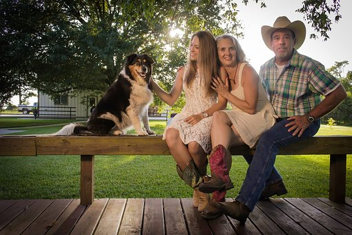 Summer, Bench, Sit, Woman, Nature, Dog