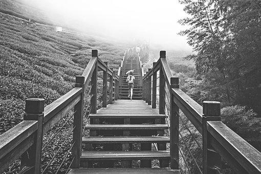 Black And White, Nature, Bridge, Outdoor, Wood, Tourism