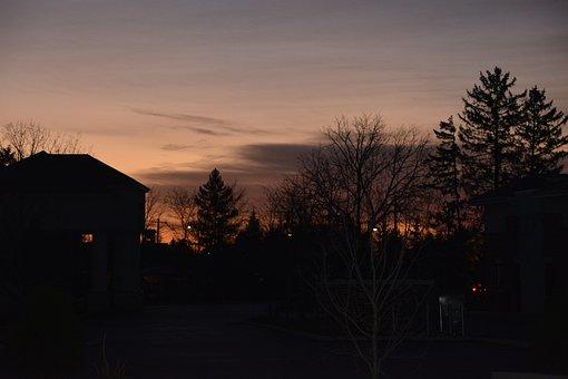 Dawn, Tree, Sunrise, Nature
