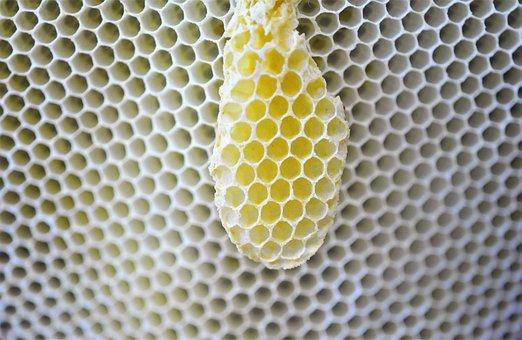 Honeycomb, Design, Hexagon House