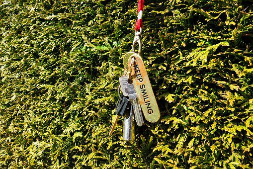 Key, Key Chain, Door, Access, Security, Lock, Hedge