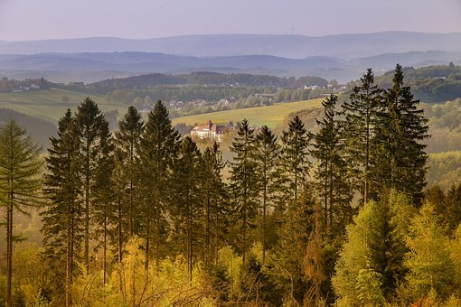 Tree, Landscape, Wood, Nature, Sky, Sauerland