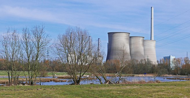 Power Plant, Nature Conservation, Wetland, Biotope