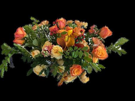 Rose, Orange, Bouquet