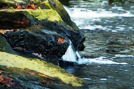 Waterfall, Park, Water, Leaves, Landscape, Rocks, Green