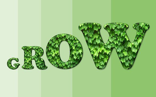 Text, Concept, Grow, Growth, Growing, Plants, Leaves