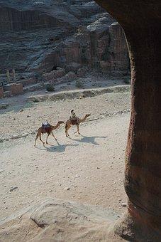 Bedouin, Dromedaries, Stadium, Petra, The Red