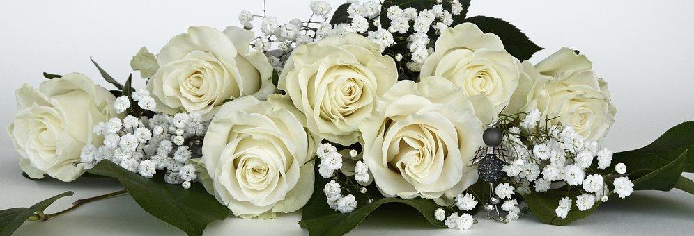 Roses, Rose Flower, Flowers, White, Gypsophila, Flower