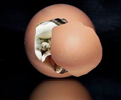 Egg, Easter, Easter Egg, Colored Egg, Colored, Colorful