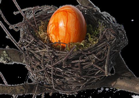 Bird's Nest, Nest, Easter Nest, Easter Decoration