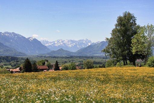 Landscape, Nature, Tree, Sky, Mountain, Panorama