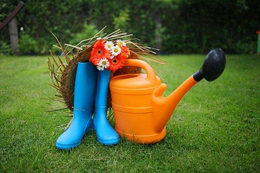Garden, Garden Tools, Gerbera, Bouquet, Lawn