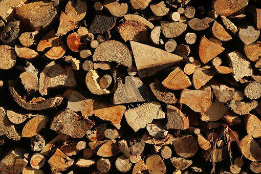 Growing Stock, Wood, Holzstapel, Nature, Saw