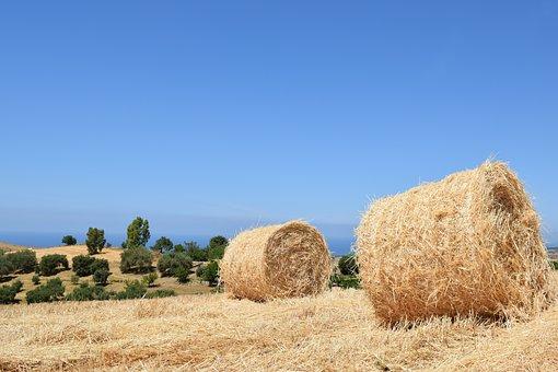 Straw, Hay, Dry, Summer, Rural, Wheat, Blue, Sicily