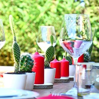 Table, Decoration, Celebration, Succulent, Wedding