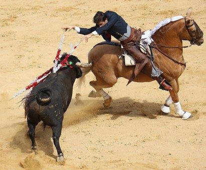 Bullring, Horse, Torero, Rejoneador