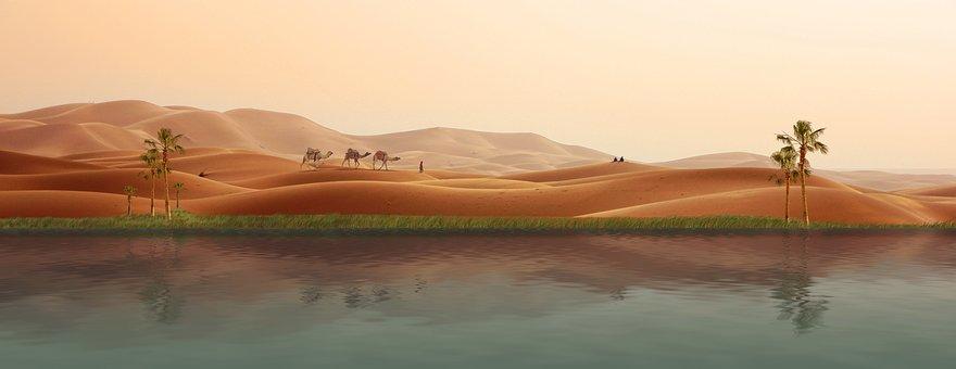 Oasis, Desert, Caravan, Palm Trees, Dunes