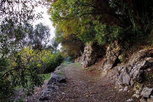 Trail, Nature, Hiking, Orsomarso, Santa Maria Mercuri