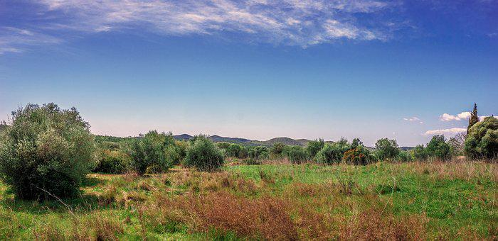 Panoramic, Nature, Sky, Landscape, Lawn, Tree, Outdoors