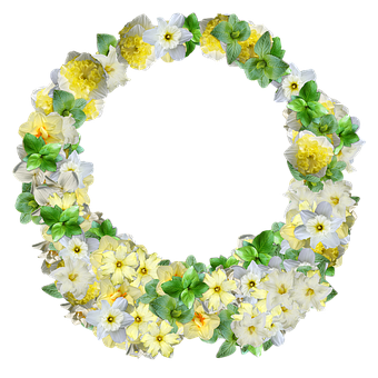 Daffodils, Flowers, Decoration, Embellishment, Spring