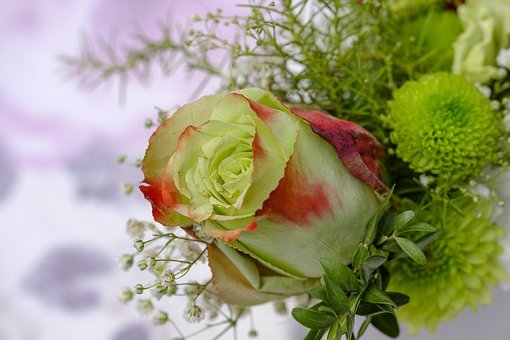 Rose, Bouquet Of Roses, Bouquet, Floral Arrangement