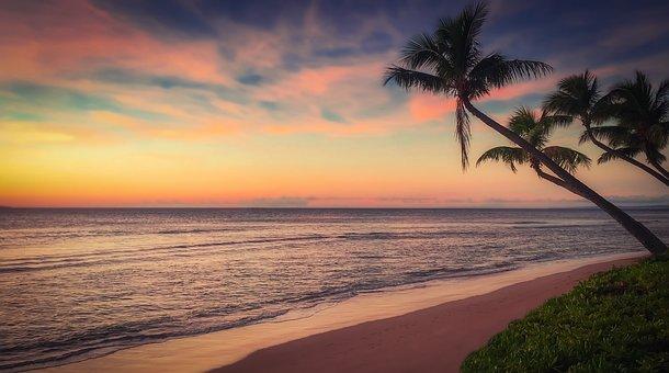 Beach, Sunset, Ocean, Coast, In The Evening, Recreation