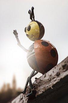 Beetle, Figure, Garden, Wood, Red Beetle, Macro, Insect