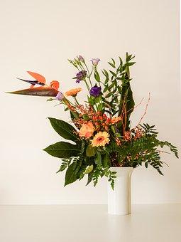 Bouquet, Caudata, Bellflower, Rose Orange