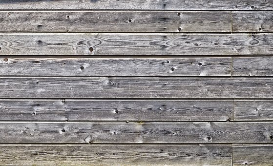 Wood, Boards, Wooden Wall, Vacation, Branches, Spruce