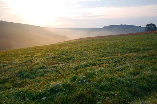 Panorama, Nature, Landscape, Grass, Sky, Horizontal