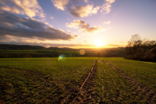 Landscape, Nature, Field, Panorama, Agriculture, Sky