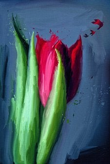 Nature, Color, Desktop, Summer, Tulip, Flowers, Red