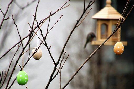 The Decision-add, Bird, Eggs, Decoration, Spring, Tree