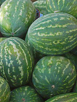 Food, Vegetable, Flora, Pasture, Agriculture, Freshness