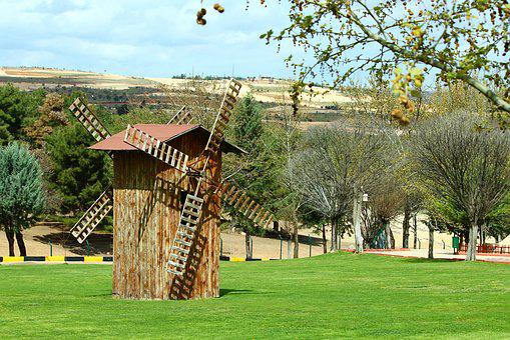 Tree, Grass, Wood-fibre Boards, Home