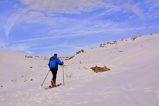 Cross-country Skiing, Skiing, Snow, Winter, Outdoors